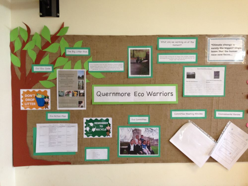 Eco Warriors Display board
